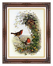 John Gould Robin canvas with dark regal wood frame