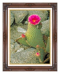 U S Fish And Wildlife Service Beavertail Cactus canvas with dark regal wood frame