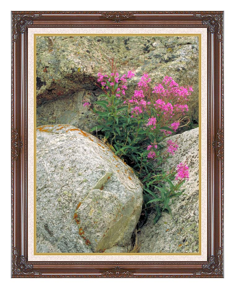 U S Fish and Wildlife Service Fireweed with Dark Regal Frame w/Liner