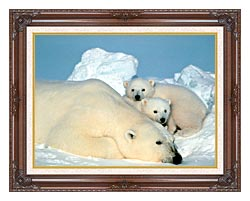 U S Fish And Wildlife Service Polar Bear With Cubs canvas with dark regal wood frame