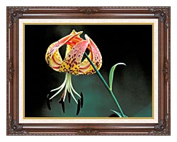 U S Fish And Wildlife Service Nodding Spotted Red Trillium canvas with dark regal wood frame
