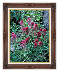 U S Fish And Wildlife Service Wyoming Paintbrush canvas with dark regal wood frame