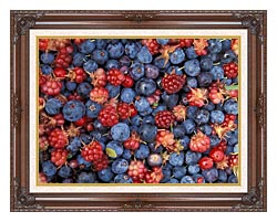 U S Fish And Wildlife Service Wild Berries canvas with dark regal wood frame