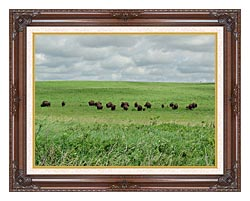 U S Fish And Wildlife Service Bison On The Range canvas with dark regal wood frame