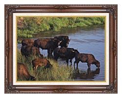 U S Fish And Wildlife Service Wild Bison canvas with dark regal wood frame