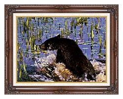 U S Fish And Wildlife Service Black Bear Cub In Pond canvas with dark regal wood frame