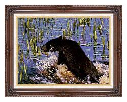 U S Fish And Wildlife Service Black Bear Cub In Pond canvas with dark regal wood frame