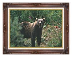 U S Fish And Wildlife Service Kodiak Bear canvas with dark regal wood frame