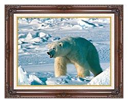 U S Fish And Wildlife Service Artic Polar Bear canvas with dark regal wood frame