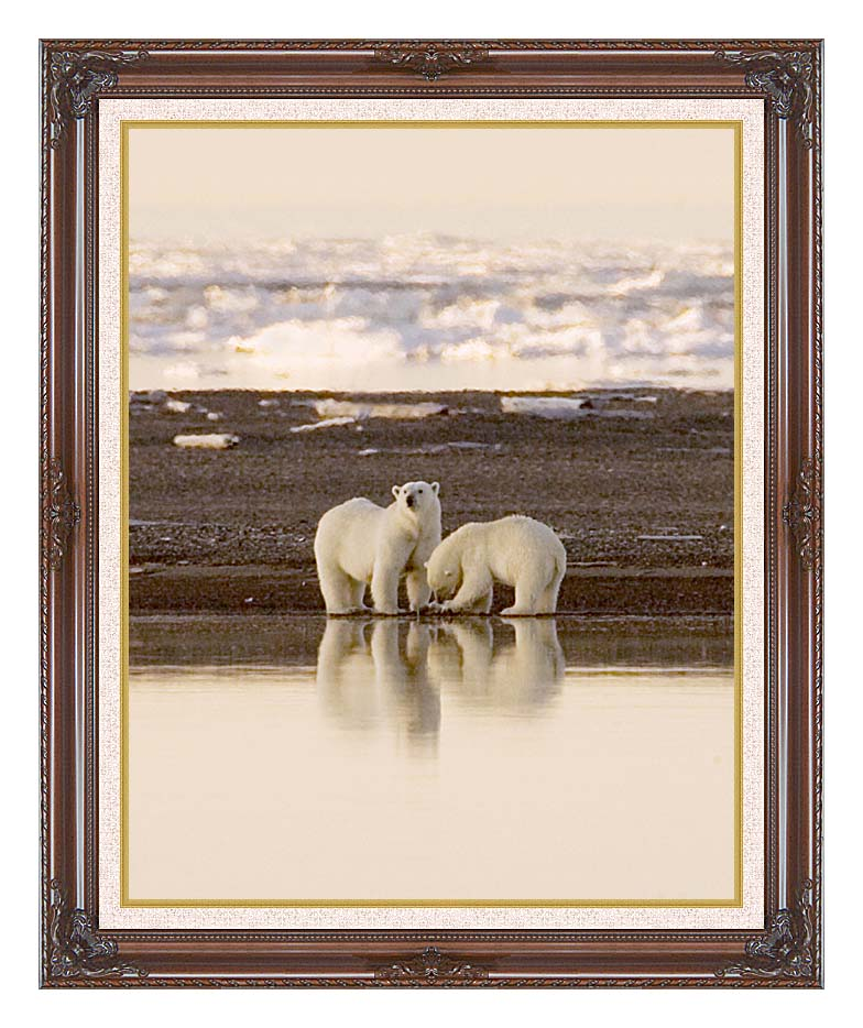 U S Fish and Wildlife Service Polar Bears with Dark Regal Frame w/Liner