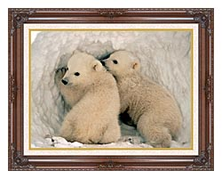 U S Fish And Wildlife Service Polar Bear Cubs canvas with dark regal wood frame