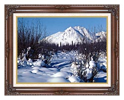 U S Fish And Wildlife Service Arctic Refuge In Winter canvas with dark regal wood frame
