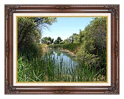 U S Fish And Wildlife Service Corn Creek Springs canvas with dark regal wood frame