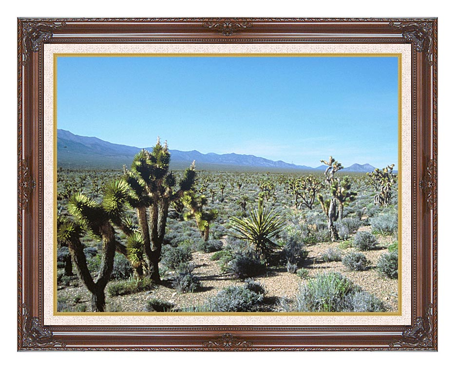 U S Fish and Wildlife Service Yucca Forest with Dark Regal Frame w/Liner