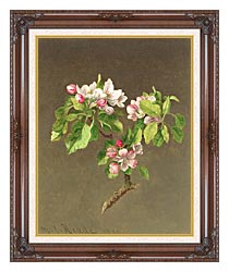 Martin Johnson Heade Apple Blossoms canvas with dark regal wood frame