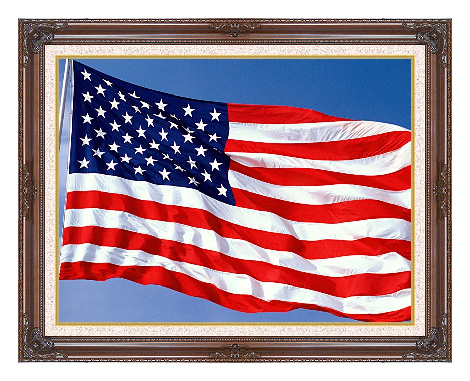 Visions of America American Flag Blowing in the Wind with a Blue Sky with Dark Regal Frame w/Liner