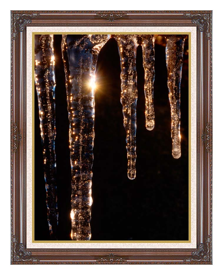 Visions of America Close-up of Icicles, Acadia National Park, Maine with Dark Regal Frame w/Liner