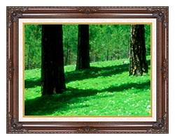 Visions of America Forest Floor At El Dorado National Forest California canvas with dark regal wood frame