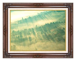 Visions of America Aerial View Of Forest On A Misty Morning Vermont canvas with dark regal wood frame