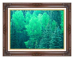 Visions of America Summer In Santa Fe National Forest New Mexico canvas with dark regal wood frame