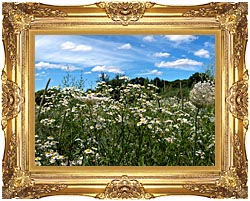 Brandie Newmon Field Of Wildflowers Easthampton Massachusetts canvas with Majestic Gold frame