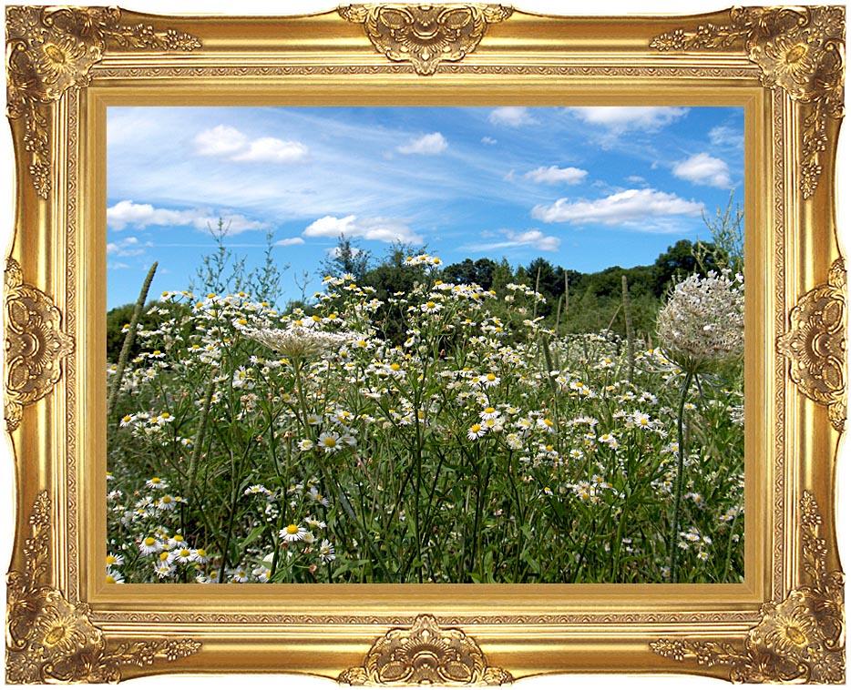 Brandie Newmon Field of Wildflowers, Easthampton Massachusetts with Majestic Gold Frame