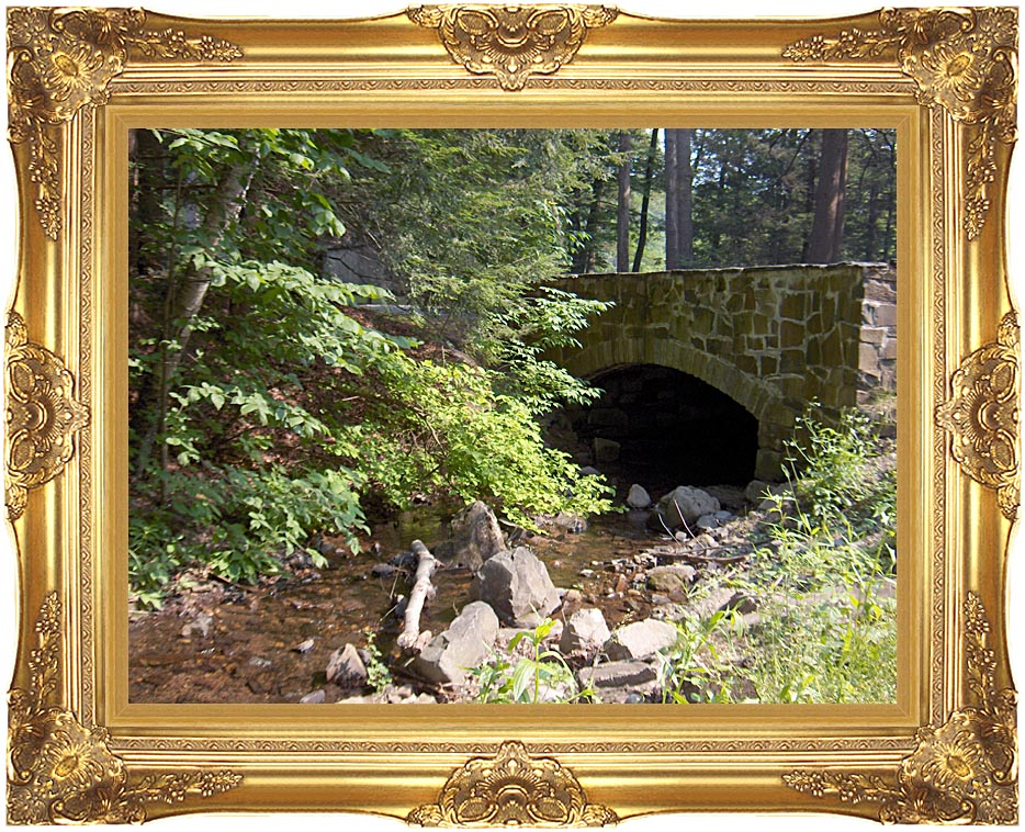 Brandie Newmon Rock Bridge at Mount Tom Massachusetts with Majestic Gold Frame