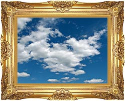 Brandie Newmon Cloudy Summer Day canvas with Majestic Gold frame