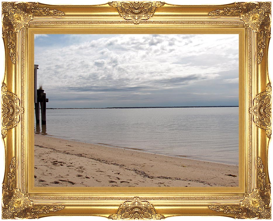 Brandie Newmon Sandy Beach in Provincetown, MA with Majestic Gold Frame