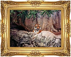 Brandie Newmon Tiger canvas with Majestic Gold frame