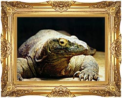 Brandie Newmon Komodo Dragon canvas with Majestic Gold frame