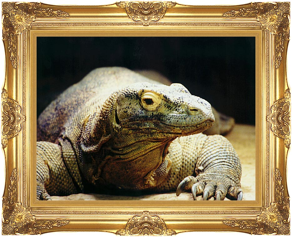 Brandie Newmon Komodo Dragon with Majestic Gold Frame