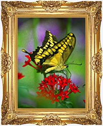 Brandie Newmon Yellow And Black Butterfly canvas with Majestic Gold frame