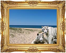 Brandie Newmon White Tigers At The Beach canvas with Majestic Gold frame