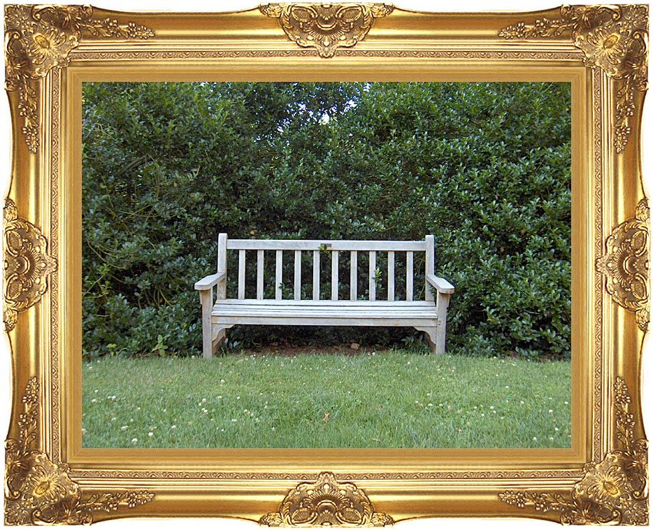 Brandie Newmon Scenic Park Bench with Majestic Gold Frame