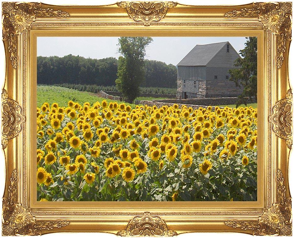 Brandie Newmon Sunflower Farm with Majestic Gold Frame