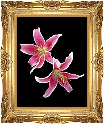 Brandie Newmon Stargazer Lily canvas with Majestic Gold frame