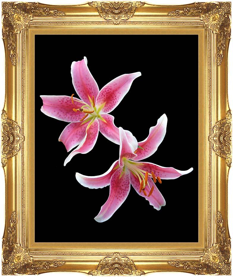 Brandie Newmon Stargazer Lily with Majestic Gold Frame