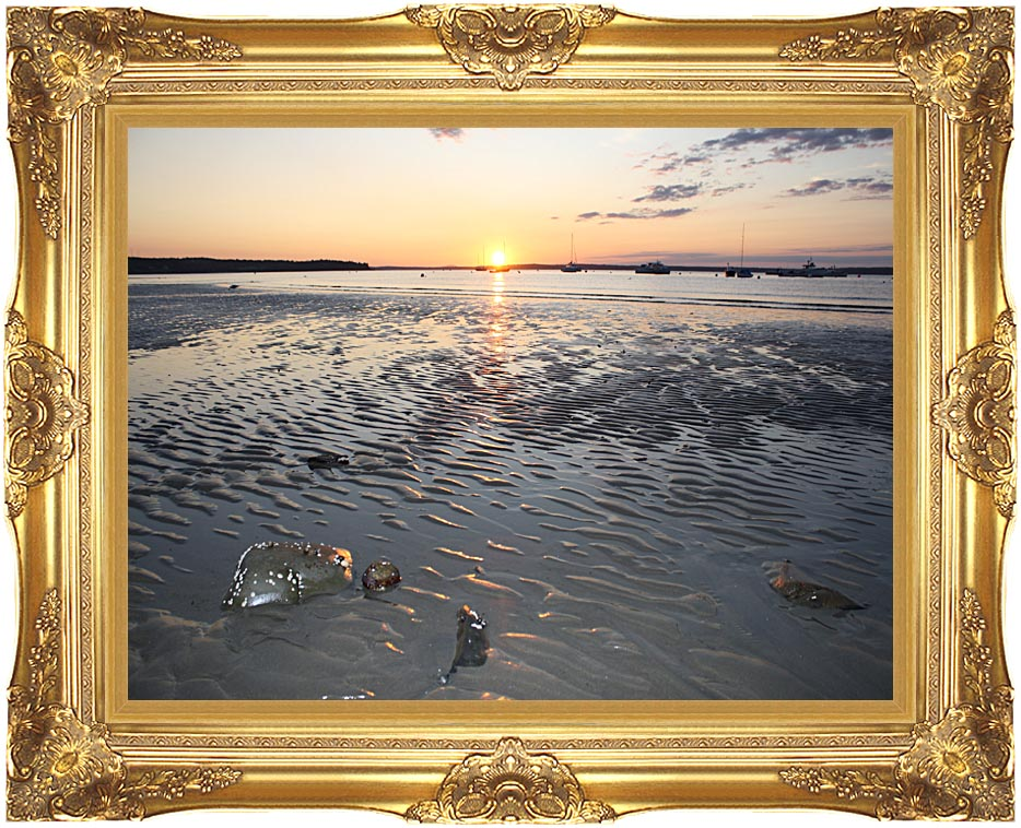 Kim O'Leary Photography Rising Star Sunrise, Maine with Majestic Gold Frame