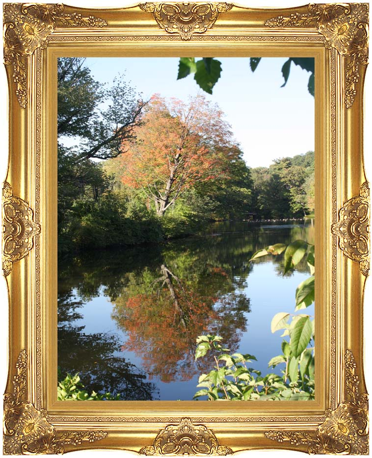 Kim O'Leary Photography Autumn Reflection with Majestic Gold Frame