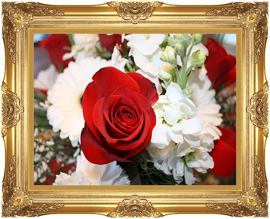 Kim O'Leary Photography Christmas Rose with Majestic Gold Frame