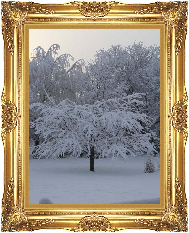 Kim O'Leary Photography Winter Creation with Majestic Gold Frame
