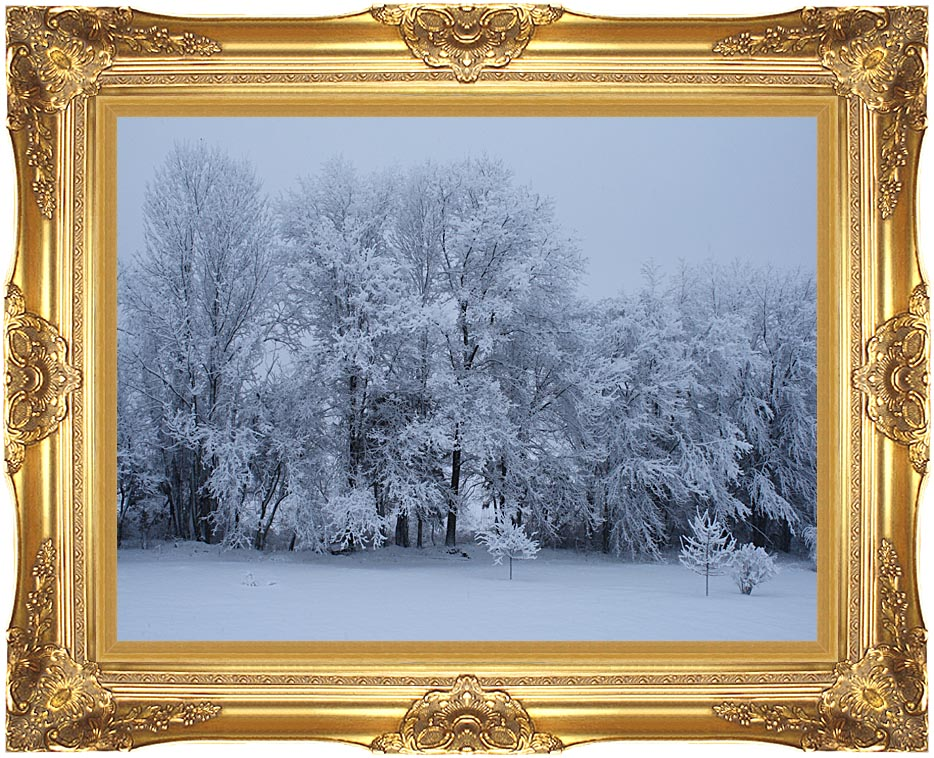 Kim O'Leary Photography Winter Wonderland with Majestic Gold Frame