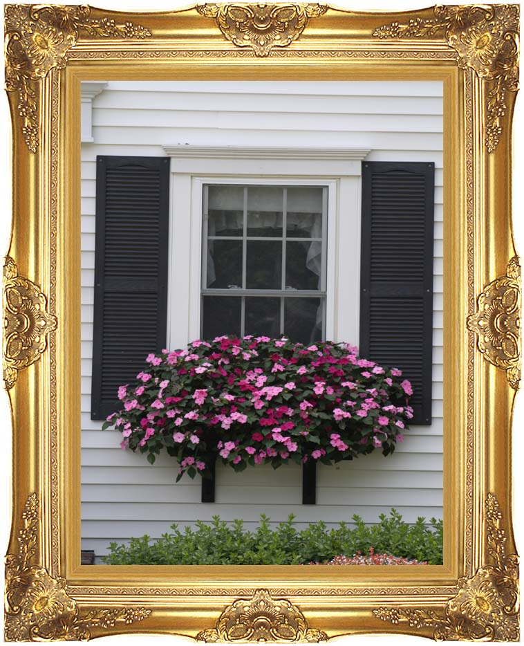 Kim O'Leary Photography Summer Window Flowers with Majestic Gold Frame
