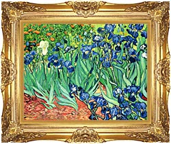 Vincent Van Gogh Irises canvas with Majestic Gold frame