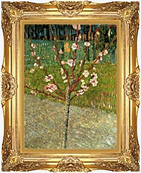 Vincent Van Gogh Almond Tree In Blossom canvas with Majestic Gold frame