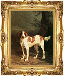 Jacques Laurent Agasse Dash A Setter canvas with Majestic Gold frame