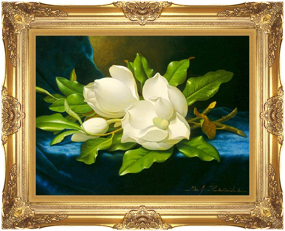 Martin Johnson Heade Magnolias on a Blue Velvet Cloth with Majestic Gold Frame