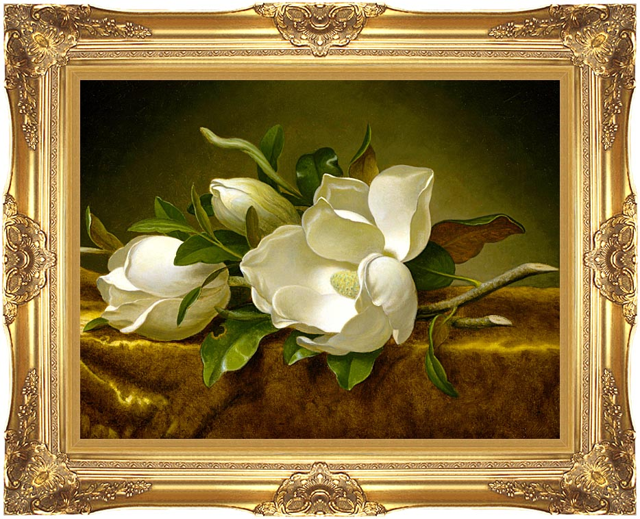 Martin Johnson Heade Magnolias on a Gold Velvet Cloth with Majestic Gold Frame