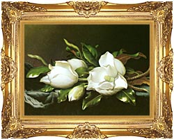 Martin Johnson Heade Magnolias Detail canvas with Majestic Gold frame
